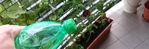 Pflanzen Bewässern Urlaub : blumen gie en im urlaub so einfach ist es wirklich ~ Michelbontemps.com Haus und Dekorationen
