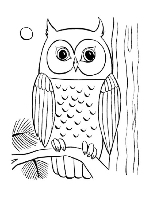 Simple Owl Coloring Pages Bestappsforkidscom