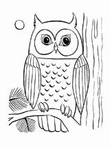 Owl Coloring Pages Sheets Young Adult Adults Simple Drawing Baby Cool Flying Printable Difficult Owls Colouring Barn Sheet Related Getdrawings sketch template