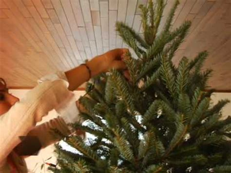 putting christmas lights on tree how to string tree lights