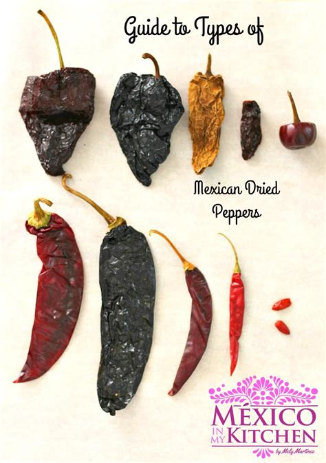 Guide To Mexican Dried Peppers Ii Mexico In My Kitchen
