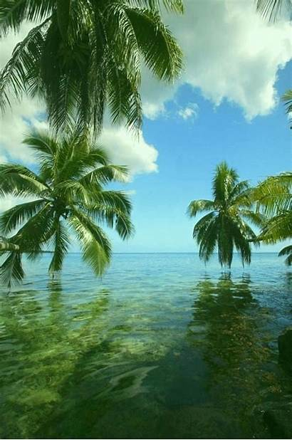 Paradise Island Tropical Bahamas Hawaii Beaches Lanai