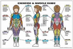 72 Best Images About Exercise Cards On Pinterest
