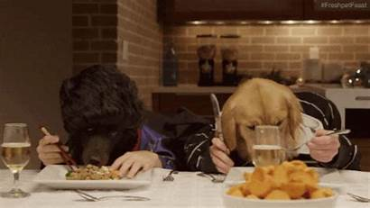 Dinner Gifs Giphy