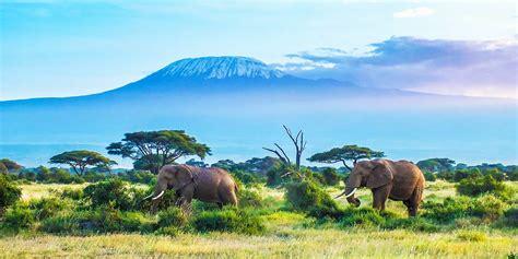 5 Days Tanzania wildlife safari   Ngorongoro Crater Tanzania