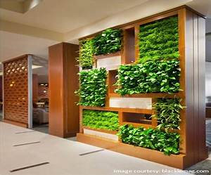 Vertical gardens in our homes and offices Jaluk