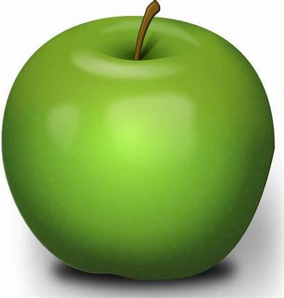 Apple Clip Apples Clipart Vector Photorealistic Clker