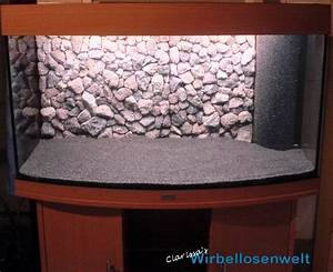 Vogelkäfig Selber Bauen : die besten 25 selber bauen aquarium ideen auf pinterest ~ Lizthompson.info Haus und Dekorationen