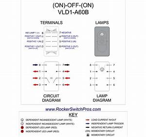 6 Pin Dpdt Switch Wiring Diagram Download