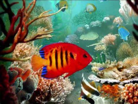saens carnival of the animals aquarium aquarium charles camille sa 235 ns carnival of the animals