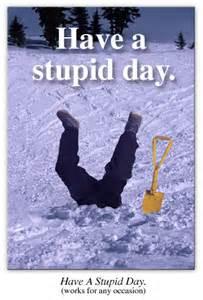Stupid Days