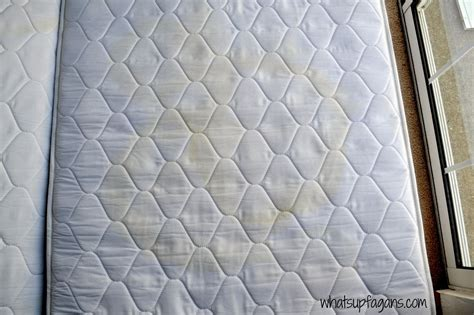 how to remove from a mattress hometalk how to remove stains and smell from a