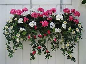 Künstliche Blumen Für Balkonkästen : blumenampel f r au en farbig 1000 gute gr nde ~ A.2002-acura-tl-radio.info Haus und Dekorationen