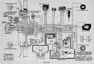 Wiring Diagram As Well Honda Trx 400 Wiring Diagram On Honda Trx 350 On Honda Trx 350 Wiring
