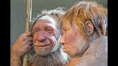 white peoples ancestor  neanderthal dr frances