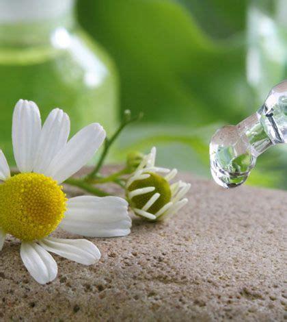 curarsi con i fiori come curarsi con i fiori di bach