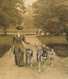 Great Danes, 1885 | Early Great Danes | Pinterest | Dog ...
