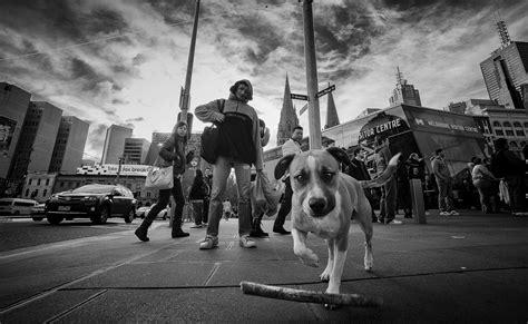 tips  shooting ultra wide angle street photography