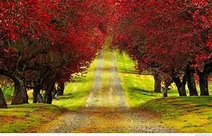 nature wallpaper hd for desktop free download full size ...