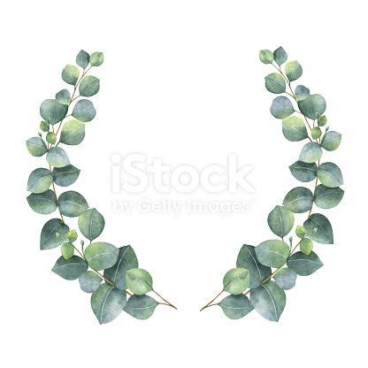 watercolor wreath  silver dollar eucalyptus leaves