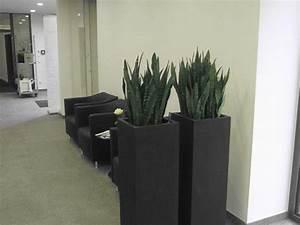 Pflanzen Als Raumteiler : pflanzen als raumtrenner nutzen b robegr nung raumteiler pflanzen raumtrenner und raum ~ Yasmunasinghe.com Haus und Dekorationen