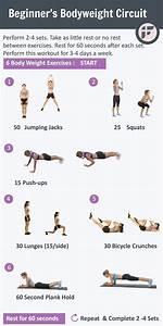 Best 25+ Body weight circuit ideas on Pinterest | Body ...