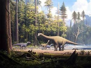 Dinosaurs Animals Of Past Hd Wallpaper 1820