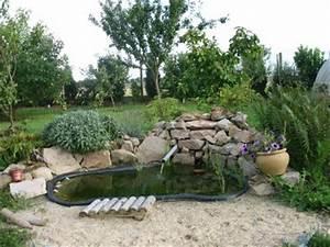 le bassin et ses plantes de rocaille les batisseurs With charming amenagement jardin avec bassin 10 rocailles