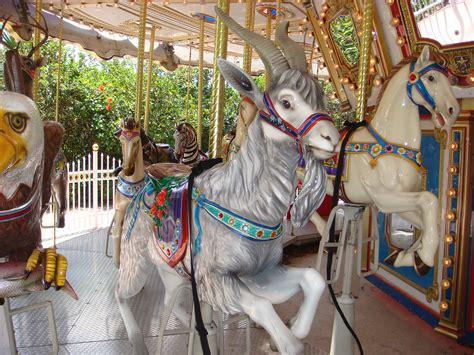 carousel goat palm beach zoo  dreher park