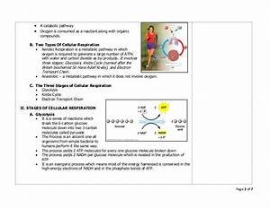 Teaching Guide On Cellular Respiration