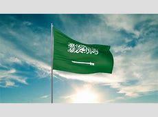 Flag of Saudi Arabia 3D max animation HD YouTube