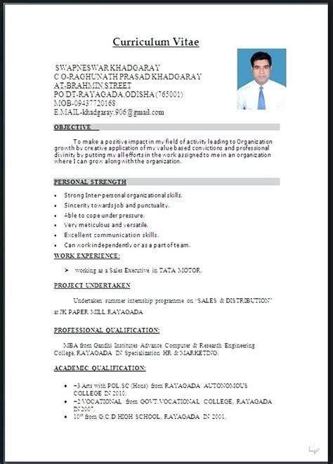 Professional Cv Template Word Document by Resume Format Word File Free Resume Templates
