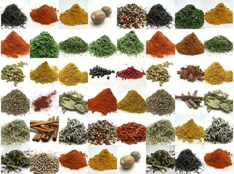 herbes aromatiques en cuisine les 25 meilleures idées concernant herbes aromatiques sur jardin d 39 herbes cultiver