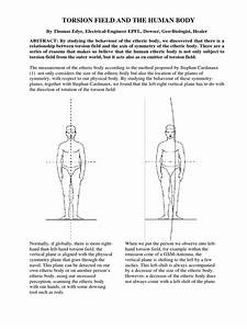 Torsion Field And The Human Body