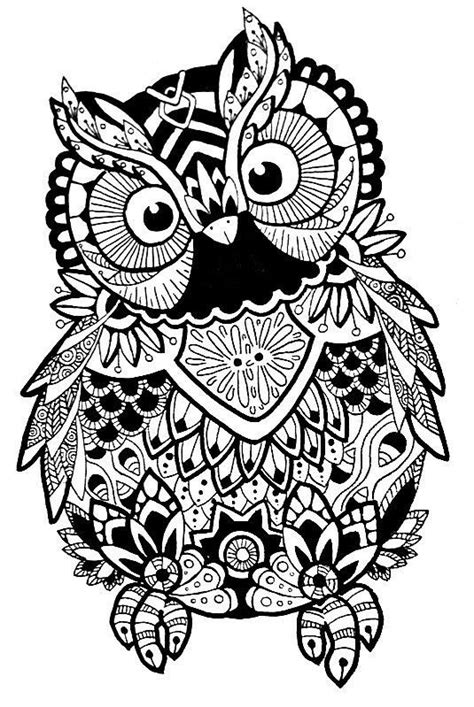 Image result for free svg zentangle | Owl coloring pages, Coloring pages, Owl