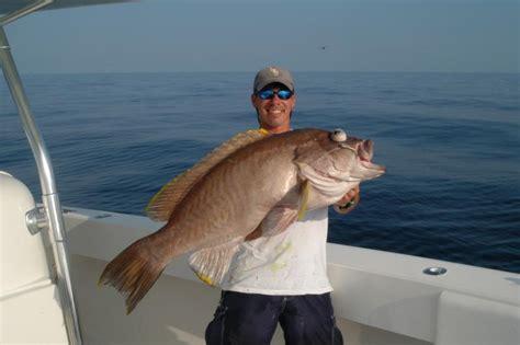 grouper record yellowedge state fishing boat