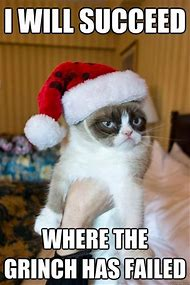 Grumpy Cat Meme Christmas