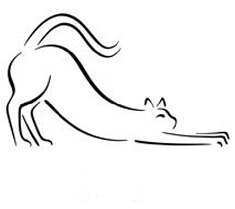 Anjas' Theme Of The Week Camel Week Post 2 The One Line