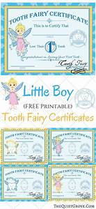 Love These Little Boy Printable Tooth Fairy Certificates