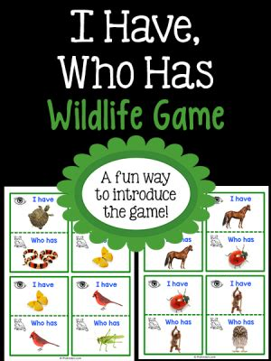 animals activities and lesson plans for pre k and 458 | i have who has wildlife 300x400