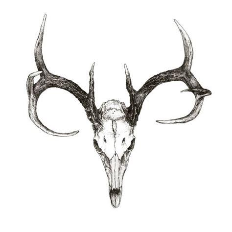 animal skulls  horns google search tattoo ideas