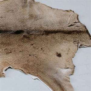 White Tailed Deer Hide Rug from Curiosity Interiors | Fur ...
