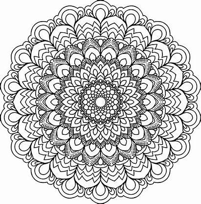 Mandala Clipart Transparent Floral Circle Webstockreview Iv