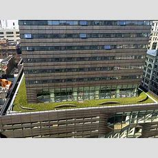 Som'suniversitycenternewschoolgreenroof « Inhabitat  Green Design, Innovation