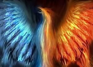 17 Best images about The Phoenix on Pinterest | Legends ...