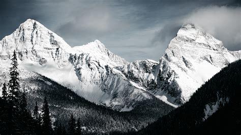 Download Stone Mountains Snow In Monochrome 800x1280