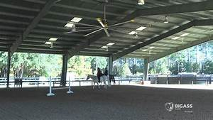 big ass fans offer help for horse barns youtube With big barn fans