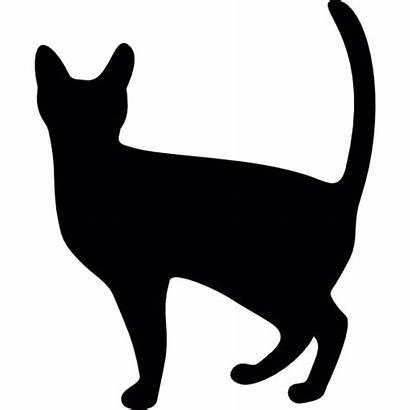 Halloween Kat Kot Gatto Nero Gato Icon
