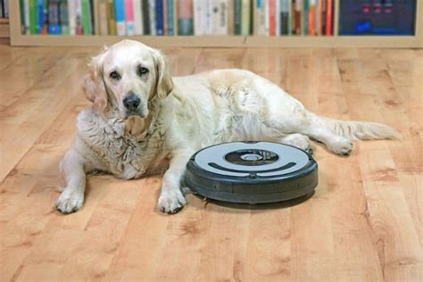 best robot vacuum for hair top 3 for pets in 2019