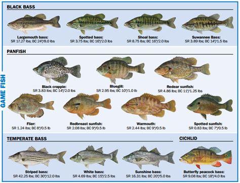 florida fishing regulations non resident license gamefish